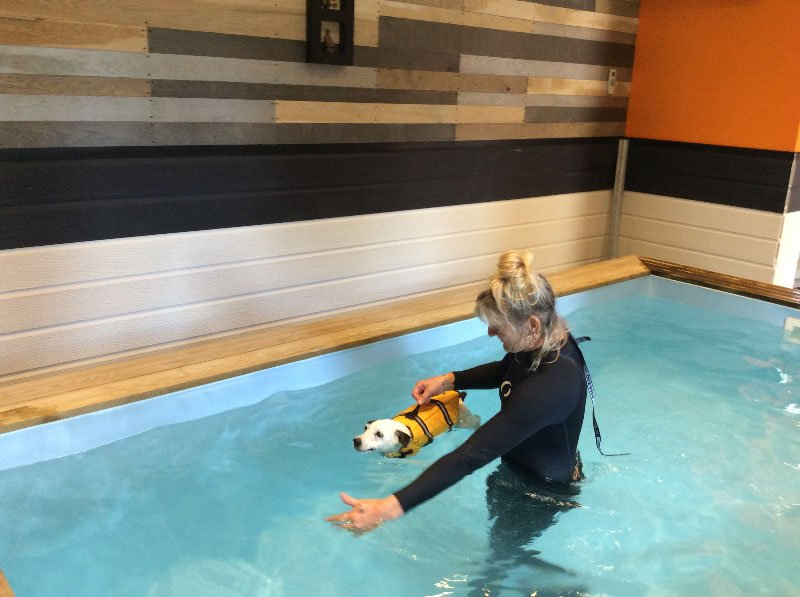 Aquatic Therapy Sessions